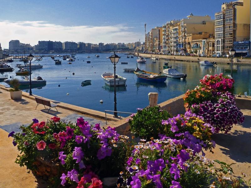 Мальта:Institute of English Language Studies