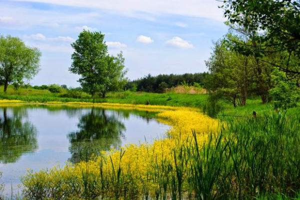 Очарование украинской  провинции: Черниговщина