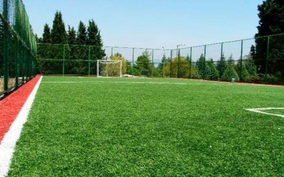 Петрос Fest футбольное поле