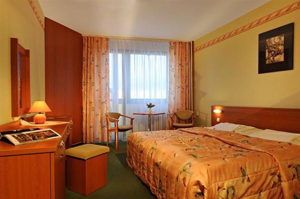 отель Гутник