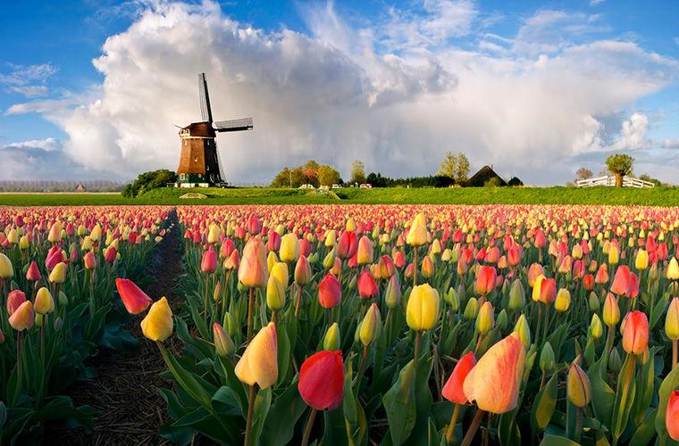 Волшебная Голландия